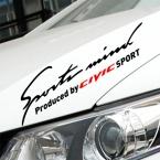 2 шт. настройки спорт разум автомобиля стикер на авто лампы брови для honda civic