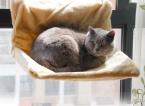 Супер мягкий кот гнездо кровать мат питомника кровать большой любимая кровать щенок мат кошка гамак поставлено на везде двухцветный