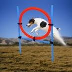 Собака игрушки обучение собака прыжки учение товары для животных синий красный круглый игрушки Pet обучения бесплатная доставка