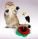 кот игрушки забавные игрушки съемный игрушек красочный с мышью игрушки для кошек царапин износостойких доска товаров для домашних животных