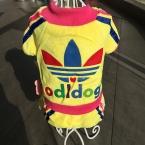 высокое качество весна осень зима собак Pet ClothesJumpsuit ClothingCoat четыре цвета маленький средний домашних собак одежда XS XXL