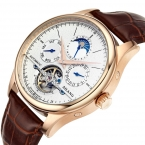AILANG Марка Мода Повседневная Бизнес Кожаные Мужские Часы Tourbillon Moon Phase Дата механические Часы Мужские Дайвинг Часы relojes